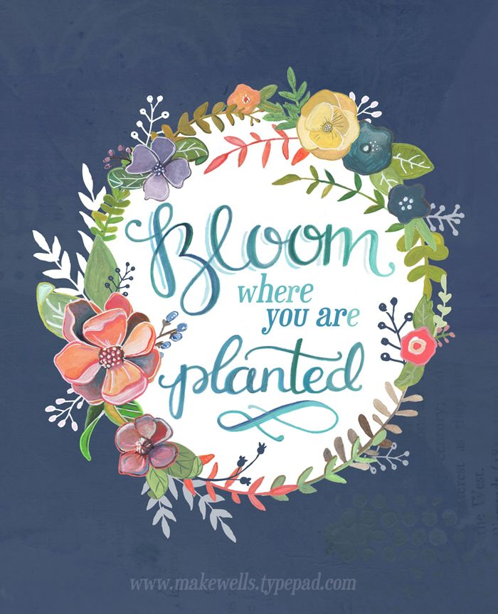 Bloom Where you are Planted - Makwells Web